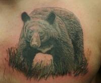 Big bear tattoo on chest